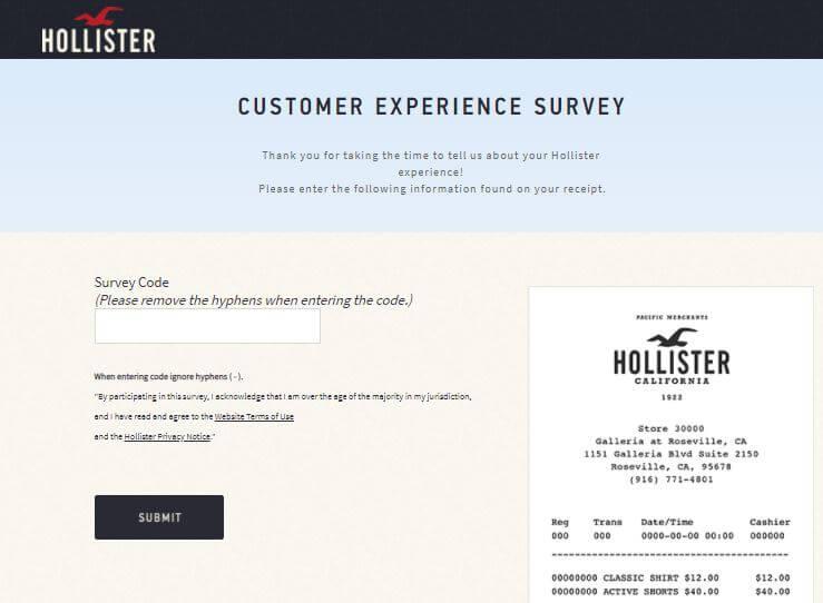 Hollister survey code